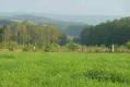Entre Masbourg et Nassogne