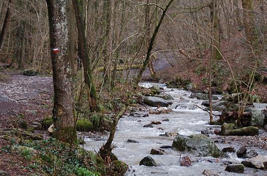 Randonnée en province de Liège