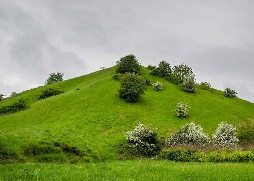 Les Collines vertes du Pays Noir