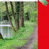 Rando-aventure au parc naturel Viroin