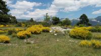 Sur la ligne bleue des Alpes  Randonnée en Haute-Provence en suivant le train des Pignes