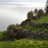 Les Açores, îles vertes au milieu de l'Atlantique