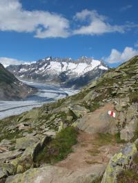 Aletsch, le plus grand glacier des Alpes se trouvent en Suisse