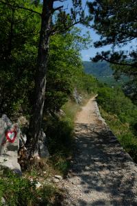 Les sentiers du Parc National de Risnjak