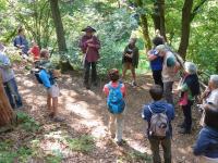 Beau succès pour les randos découvertes GR Patrimoine en province de Luxembourg
