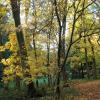 Savourez votre automne en rando.