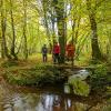 Album photos Randos GR Fête du Parc Naturel des Vallées du Viroin et de l'Hermeton