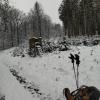 Trois étudiants « Entre Lesse et Lomme « en autonomie sous la neige !