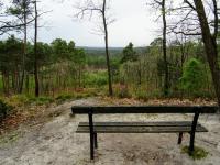 Marcher dans la forêt de Fontainebleau, c'est un peu remonter le fil de l'histoire de la randonnée