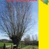 Le nouveau  tour de la Wallonie picarde – GRP 123