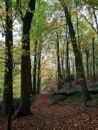 Un topoguide pour faire le tour de la Wallonie picarde à pied