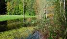 Réserve naturelle du Sart-Tilman.